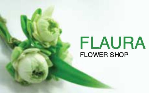 florist b_c 4a plant flower