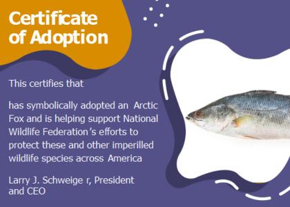 adoption card 14 fish animal
