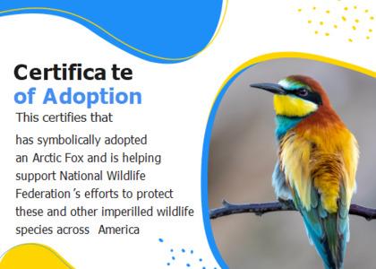 adoption card 15 beeeater bird