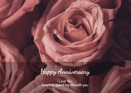 anniversary card 122 plant rose