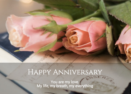 anniversary card 128 rose plant