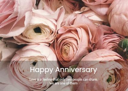 anniversary card 137 plant rose