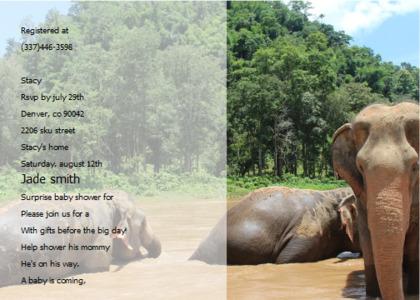 babyshower card 9 elephant wildlife
