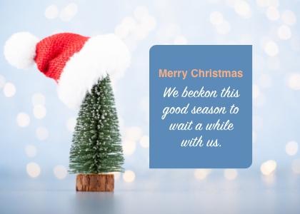 christmas card 9 tree plant