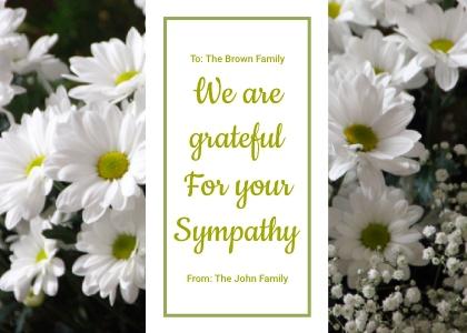 sympathy card 2 plant daisy