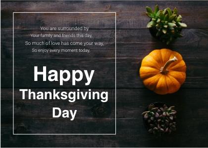 thanksgiving card 3 plant pumpkin
