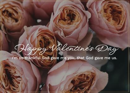 valentine card 169 rose plant