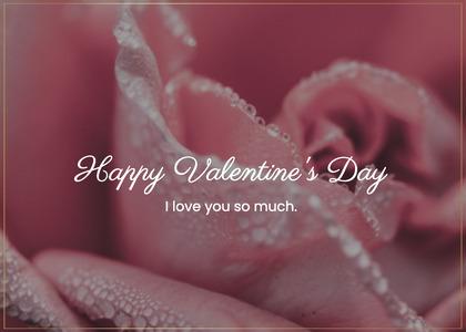 valentine card 198 rose plant