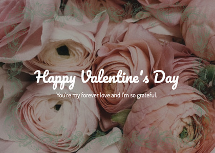 valentine card 204 rose plant