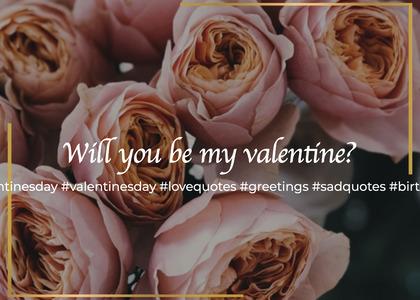 valentine card 41 rose plant