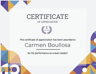 certificate 111 text diploma
