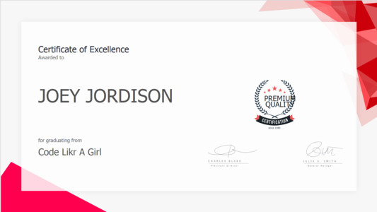 certificate 19  certificate of excellence template free