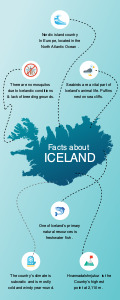 geographical infographic 4 custom geographical  infographic