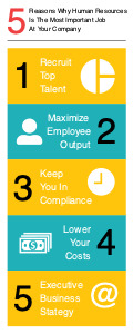 humanresources infographic 5 human resources  infographic template
