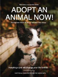 animalrights_ poster 2 animal right  poster maker