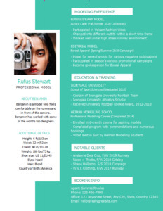 resume 23 professional  resume format