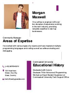 resume 3 best  resume format